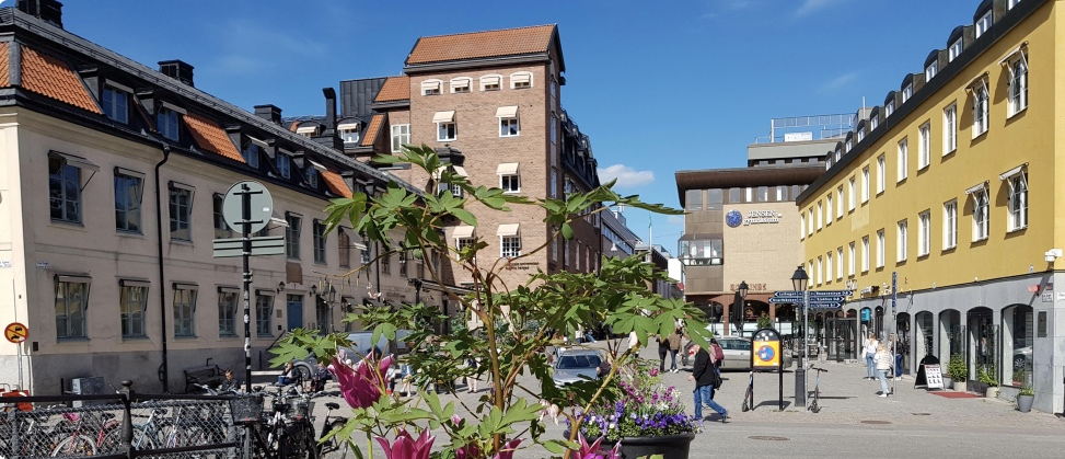 Start Gamla Torget Uppsala Universitet